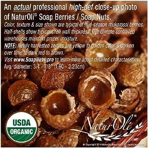 NaturOli Soap Nuts/Soap Berries. 1-Lb USDA ORGANIC (240 loads) + 18X BONUS! (12 loads) Select Seedless. Wash Bag, Tote Bag, 8-pg info. Organic Laundry Soap/Natural Cleaner. Processed in USA!