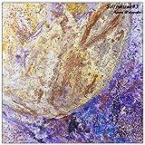 月兎-ヴィオラソロver-