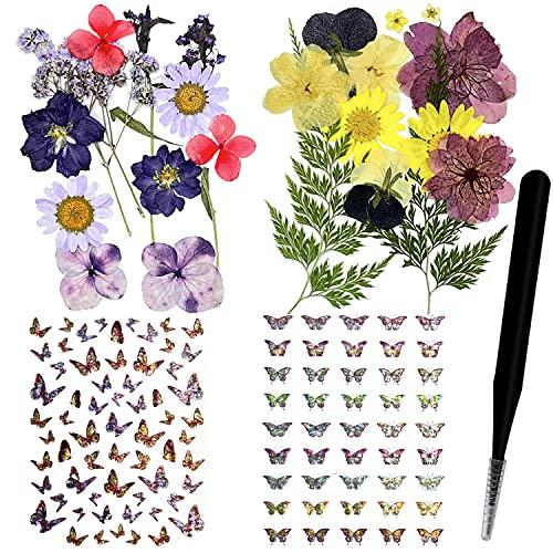 124 piezas de hojas de flores prensadas secas naturales y pegatinas de mariposa con pinzas para álbumes de recortes, resina, joyería, manualidades, velas y uñas, decoración floral