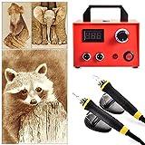TOPQSC Digital Brandmalerei Maschine Professionel Pyrographie Werkzeug 220V 100W Wood