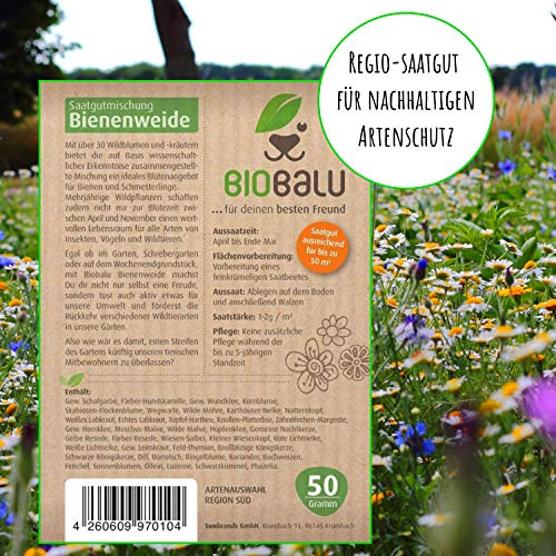 Bienenweide Saatgut - 4