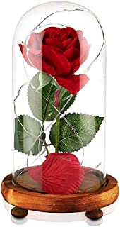 Beauty and The Beast Rose Red Silk Rose in Glass Dome with Fallen Petals & LED Light on Wooden Base Preserved Flowers Gift for Valentine's Day Party Wedding Anniversary Birthday Gift Card Inside