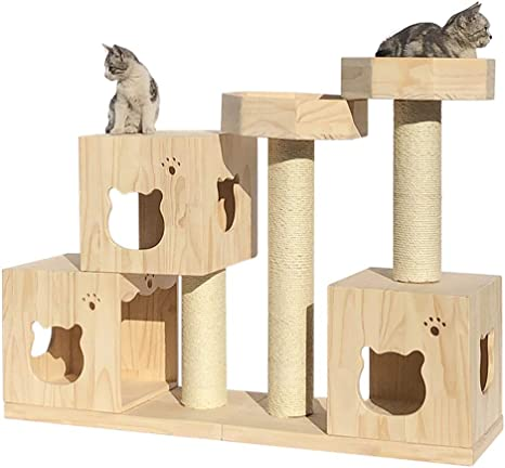 Escalada Del Gato Gato De Lujo Casa Casa Del Animal Doméstico ...