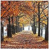 Murales Mural no tejido personalizado 3D HD park otoño planta árbol camino paisaje papel tapiz dormitorio sala de estar sofá TV fondo pared decoración pintura