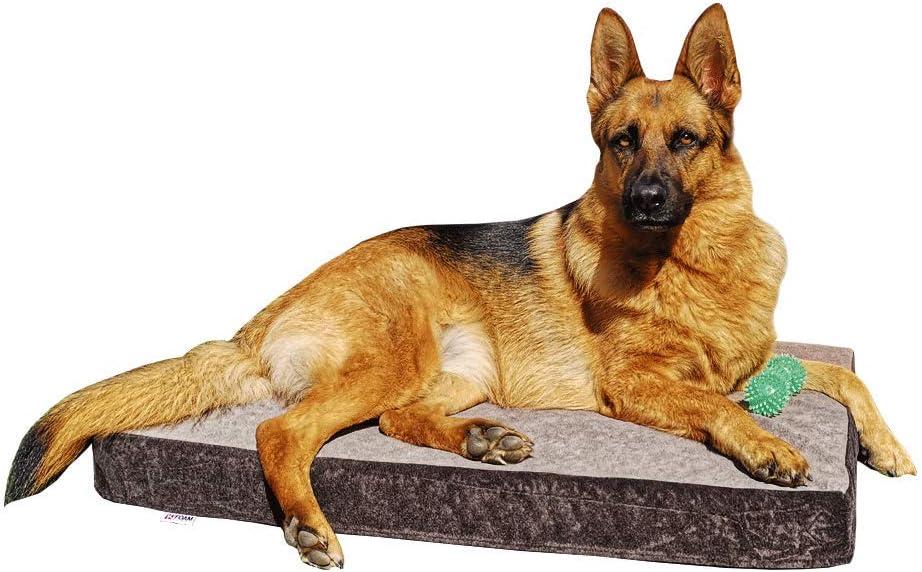 Cama para Perros Ortopédica Grande   Funda y Núcleo 100% Lavable   Antibacteriano   Tejido Especial para Mascotas   90 x 60 x 9 cm (70x50x9cm)