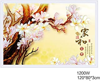 ZHIRONG Radiador 1200W Calefacción de Cristal de Carbono Calefacción Decorativa de Doble Uso Cálido Pintura de Pared Placa de Calefacción 120 * 80 CM ( Color : 02 )