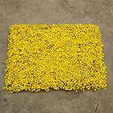CHZSDCP Künstliche Pflanze 16 '' X 24 '' Künstliche Buchsbaum Laub Hecke Wandpaneele Für Garten Home Decor Simulation Gras Rasen Teppich Rasen Outdoor Flower Wall Gelb Mailand Pflanze