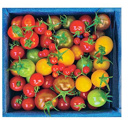 おかざき農園 プティリサ・ジュエルボックス ミニトマト 詰め合わせ 700g トマト 国産 高知