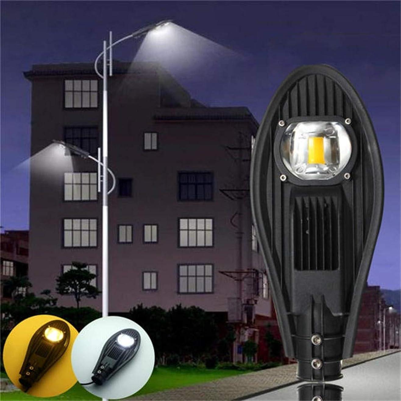 短くするくしゃくしゃ把握人感センサーライト ガーデンライト LEDウォームホワイト/ホワイトロードストリートフラッドライト屋外の歩道ガーデンランプDC12V 玄関先/庭/駐車場/ガーデン等屋内外に適応 (Color : Black, Size : 30W)