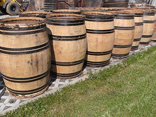 JUNIT 225 Liter Burgunder - Barriquefass Eichenfass Weinfass Holzfass Wasserfass