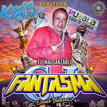 Cervecita (feat. Sonido Fantasma)