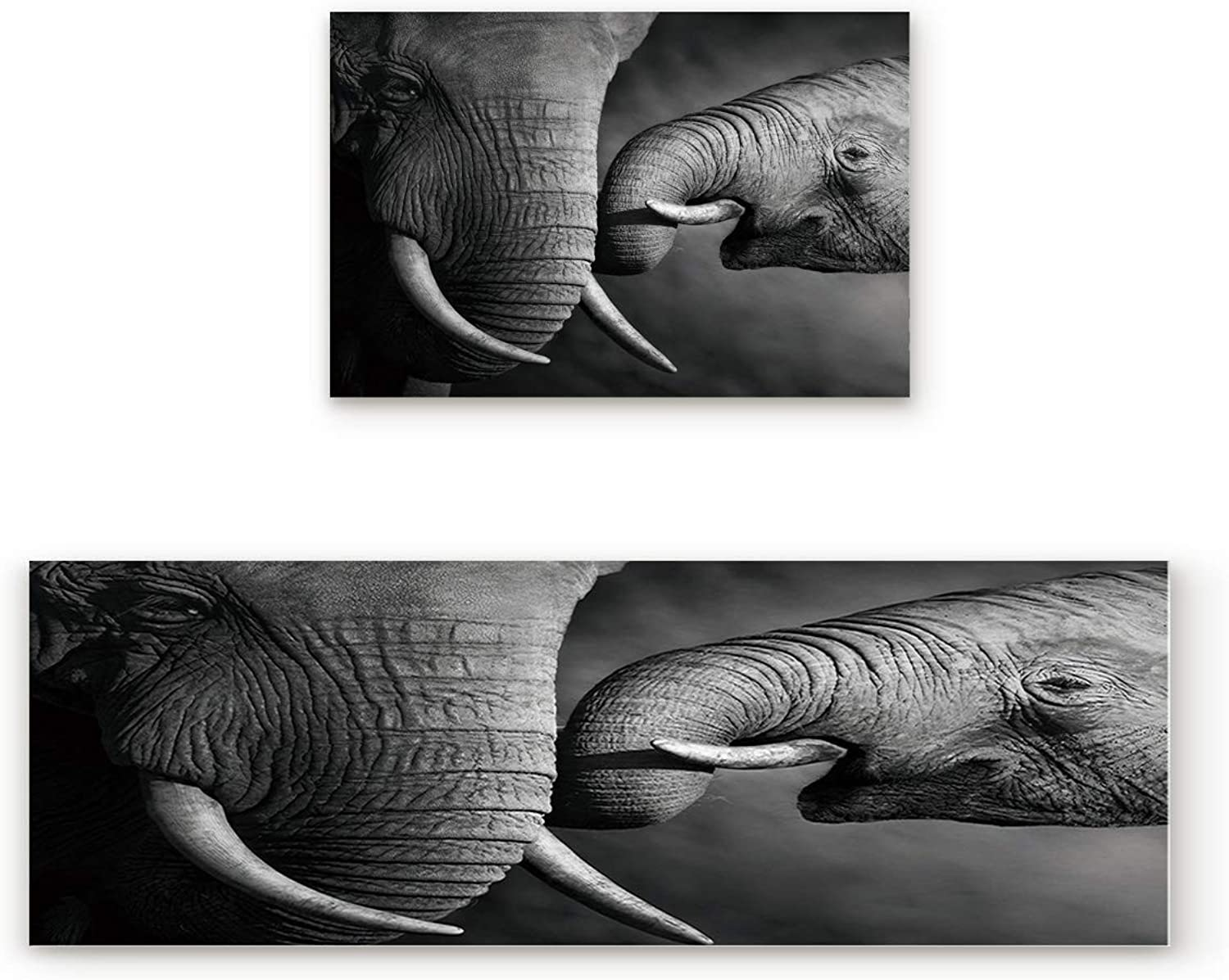 KAROLA 2 Piece Non-Slip Kitchen Mat Doormat Runner Rug Set Thin Low Pile Indoor Area Rugs Mother and Baby Elephant Family 19.7 x31.5 +19.7 x63