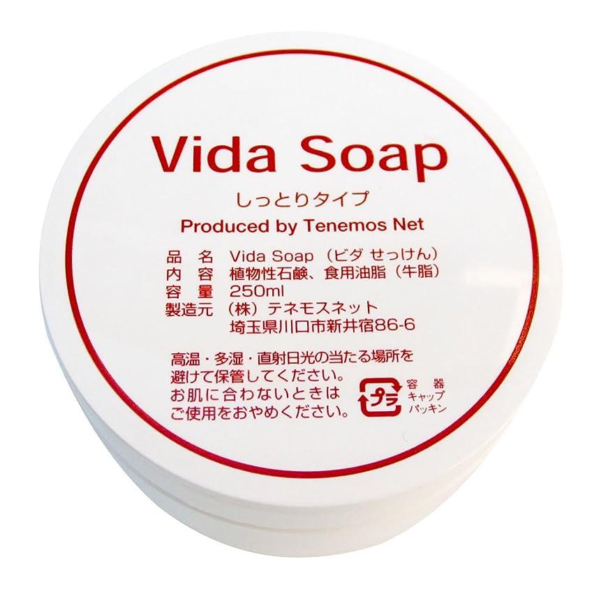 窒息させる固める思春期のテネモス ビダせっけん Vida Soap しっとりノーマル 動物性 250ml
