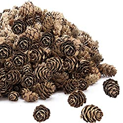 200 Pieces Thanksgiving Rustic Mini Brown Pine Cones in Bulk - Christmas Natural Pine Cones Ornaments for Home Decoration,Fall and Christmas Crafts