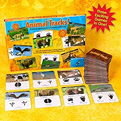 Animal Tracks Game for Children