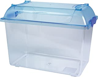 small travel fish tank