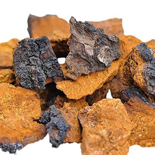 ChagaVital Chaga Pilz aus Lappland (Finnland) - Große Brocken aus Wildsammlung - 30 Gramm (6-Wochen-Packung)