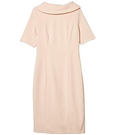Adrianna Papell Roll Neck Sheath Collar Dress w/ V-Back (Blush) Women