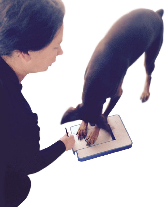 DiggerDog Nail File Stress depot Free Alternative to Clippers Dog Columbus Mall