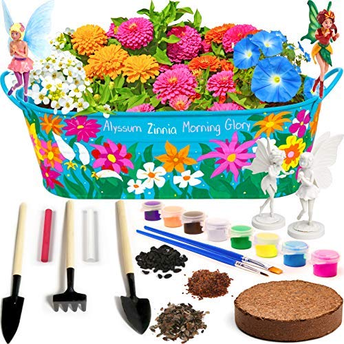 Little Planters Paint & Grow Fairy Garden with Real Flowers and Magical Fairies - Paint, Plant and Grow Morning Glory, Zinnia and Alyssum Flowers - Craft Kit for Kids All Ages Both Girls and Boys