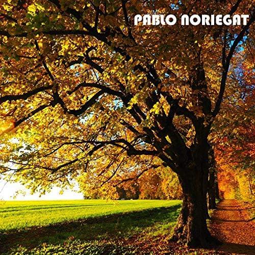 Pablo Noriegat