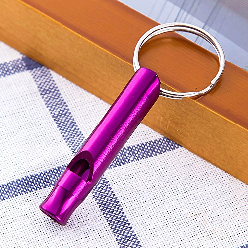 Ruimin Sifflet de survie d'urgence : mini sifflet multifonction en métal avec porte-clés pour randonnée, camping, escalade