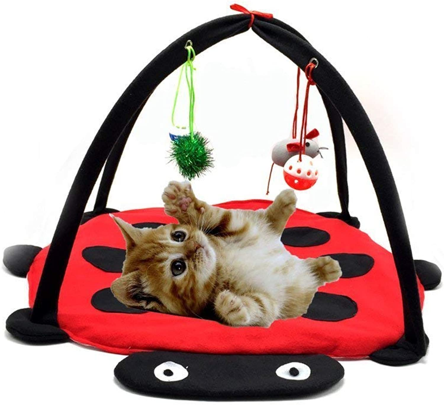 LLYU Red Beetle Bell cat Tent pet Toy cat Hammock Toy