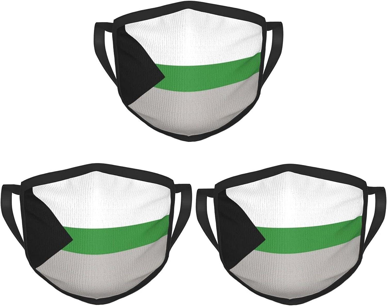 Demiromantic Flag Face Mask 3PCS Unisex Balaclava Comfortable Washable Reusable Fashion for Men Women