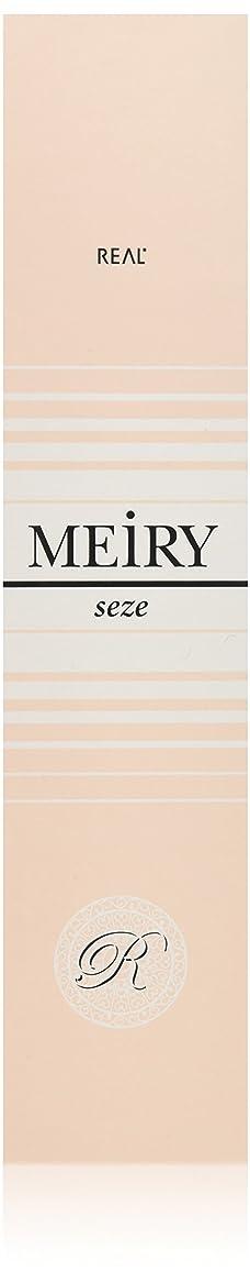 天国華氏パントリーメイリー セゼ(MEiRY seze) ヘアカラー 1剤 90g ベージュ