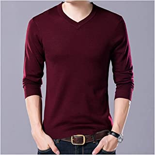 Admissioned Quiet World Men Clothing Autumn Winter Pull Homme Cashemre Pullover Sweaters Men Casual V-Neck Wool Jersey