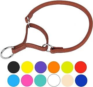 leather martingale dog collar
