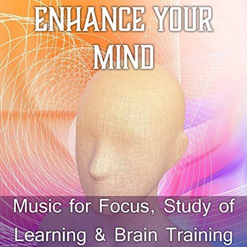 Academy of Increasing Power of Brain
