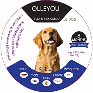 OLLEYOU Animal Health Care, Flea and Large Dog Flea Prevent Dog Best Flea Clothing Mosquito Repellent 8 Months Protection ...