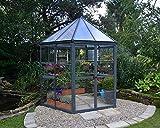 OPTIMALE BEDINGUNGEN FÜR BESTMÖGLICHE ERGEBNISSE - Schaffen Sie die besten Bedingungen für Ihre Blumen und Pflanzen. Bauen Sie Ihre eigenen Gurken, Tomaten oder anderes Gemüse an. PERFEKTE KOMBINATION - Diffuses Sonnenlicht von oben, für optimales Pf...