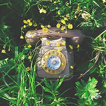 Chiama Me