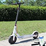 Smartway Elektro Scooter 500 W Escooter mit APP & Bluetooth Roller Elektroroller Faltbar Aluminium E-Scooter (Weiss)