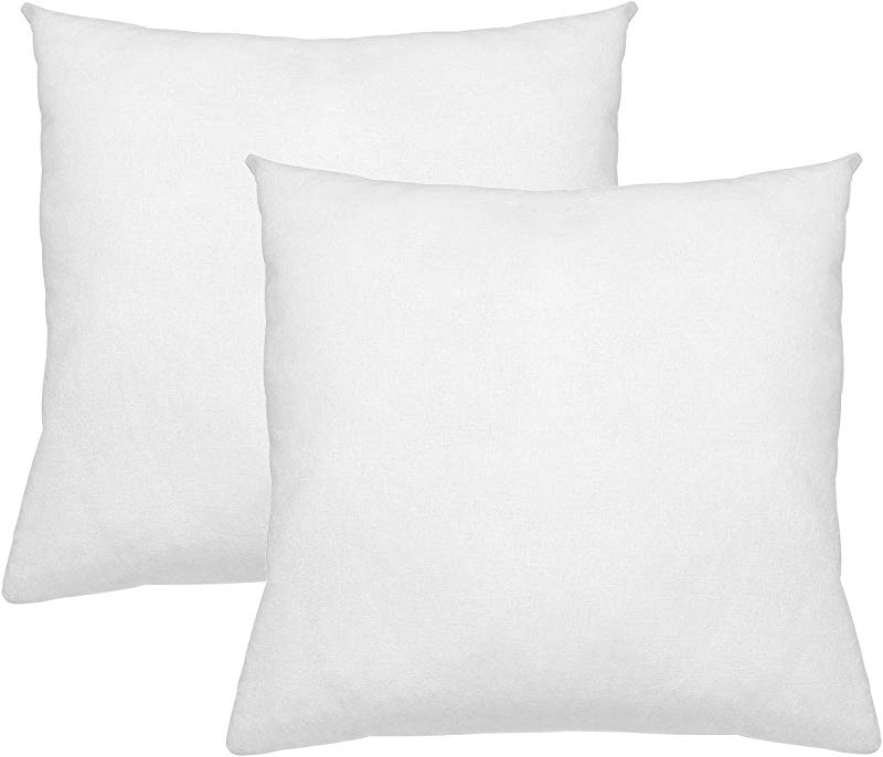 Digital Decor Premium Hypoallergenic Pillow Insert Sham Square Form Standard White 24 X 24 Double Pack