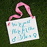 Gender Reveal Party Sign We're Just Here For The Sex Baby Decor
