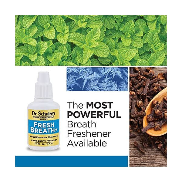 Detox products Dr. Schulze's | 5-Day Liver Detox | May Cleanse & Disinfect Gallbladder | Herbal