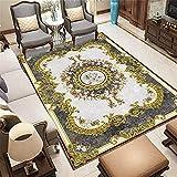 WCCCW Arte Moda étnico patrón Textura Claro antiincrustante Acceso Accesorios sofá Corredor Decorativo alfombra-120x160cm para Comedor, Dormitorio, Pasillo y Habitación Juvenil