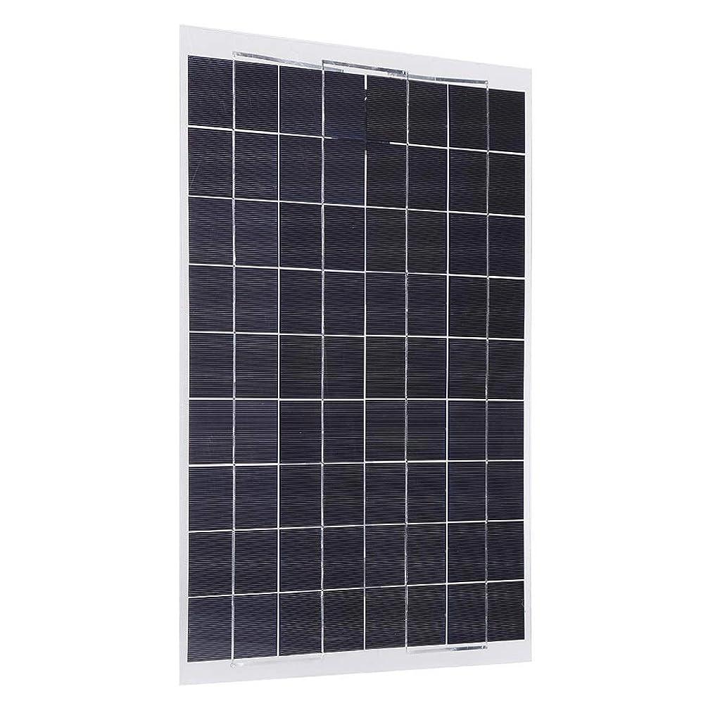 葉を集める地上で無一文ソーラーパネル RVボート30W 12Vモノラル柔軟なソーラーパネル充電器のためのソーラーパネル (Color : Black, Size : 12v)