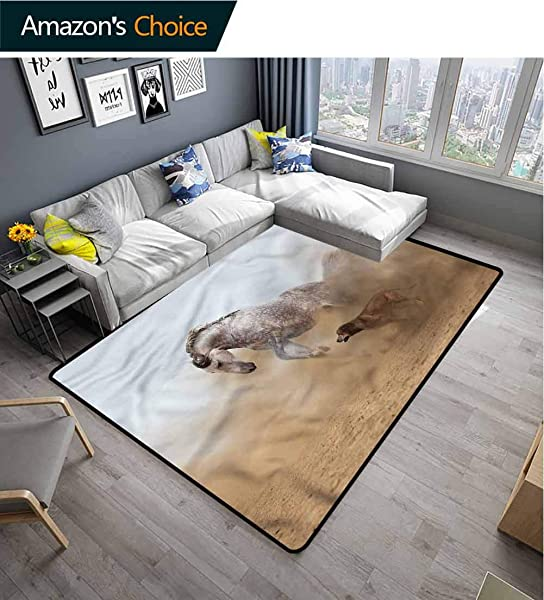 TableCoversHome Horses Plaid Bath Mats Carpet Stallion Playing With A Dog Pattern Printing Door Mat Durable Rugs Living Dinning Office Rooms Bedrrom Hallway Carpet 2 X 6