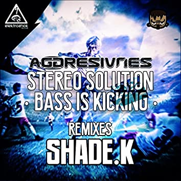 Stereo Solution & Bass Is Kicking Remixes