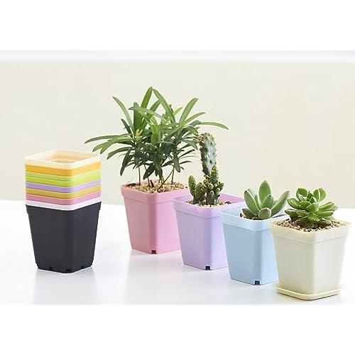 COOLWILL® Pots de fleurs plastique carré coloré de plantes succulentes Pots avec plateau léger Accueil Bureau jardin décoration ensemble de 7 (7*7*8cm)