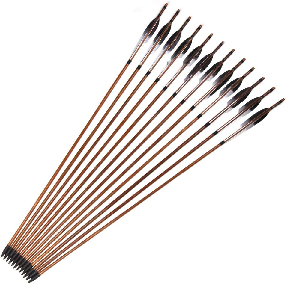 ANTSIR 30Inch Bamboo Wooden Ranking TOP14 Arrows and with At the price of surprise Iron Turkey Feather