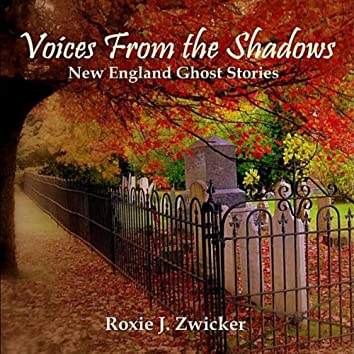 VOICES FROM THE SHADOWS - NEW ENGLAND GHOST STORIES