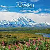 Alaska Wild & Scenic 2022 12 x 12 Inch Monthly Square Wall Calendar, USA United States of America Noncontiguous State Nature