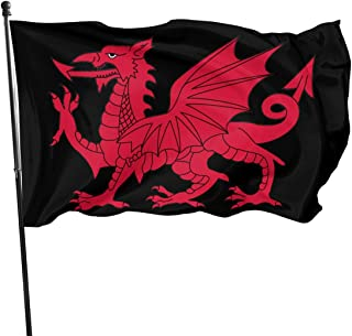 Welsh Dragon Flag Brass Grommets Vivid Color 3x5 Feet Flag Outdoor Decoration, Garden Decoration, Holiday Decoration, Anniversary Decoration