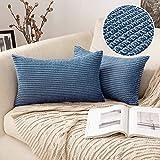 MIULEE 2 Piezas Funda de Cojines Poliéster Elegante Suave y Duradero Funda de Almohada Cómoda para Sofá Cama Decoracion Modernas Preciosas para Sillas Dormitorio Habitacion 30x50cm Azul