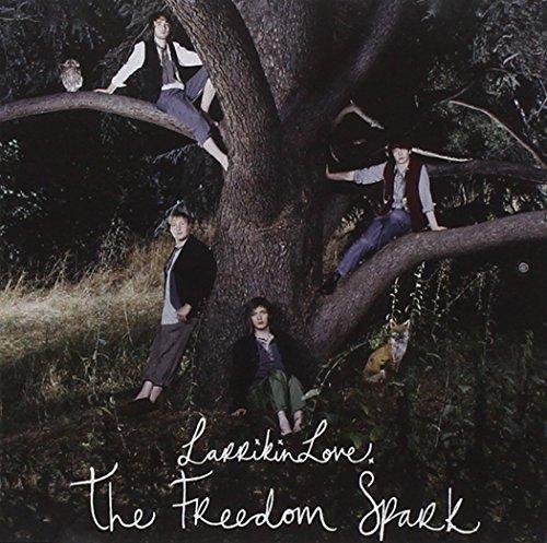 The Freedom Spark